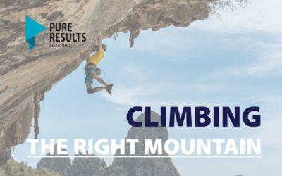 Climbing The Right Mountain